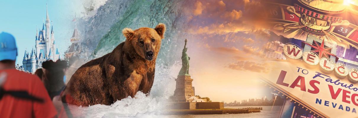 North America & Canada Cruises